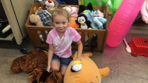 6-Year-Old Collects Stuffed Animals to Comfort Hurricane Victims